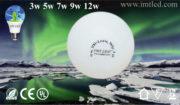 IMT-LED-Bulb-2