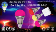 IMT-LED-Decorative-Bulb-3