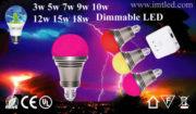 IMT-LED-Decorative-Bulb-3